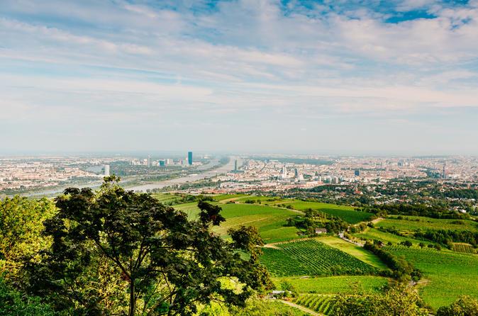 Vienna Panorama Tour