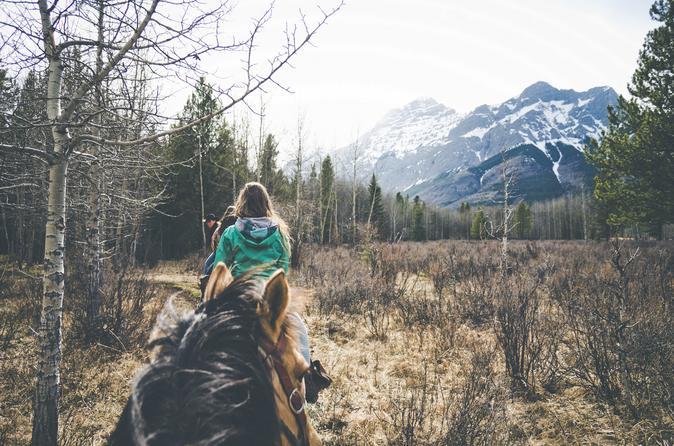 1 hour horseback trail ride in kananaskis in kananaskis 333978
