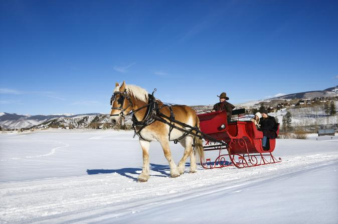 Private Horse Drawn Sleigh Ride from Salzburg