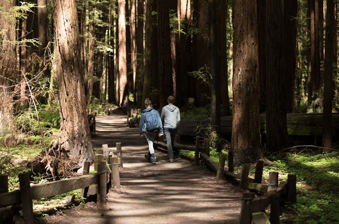Redwoods, California Coast & Sausalito Day Trip from San Francisco