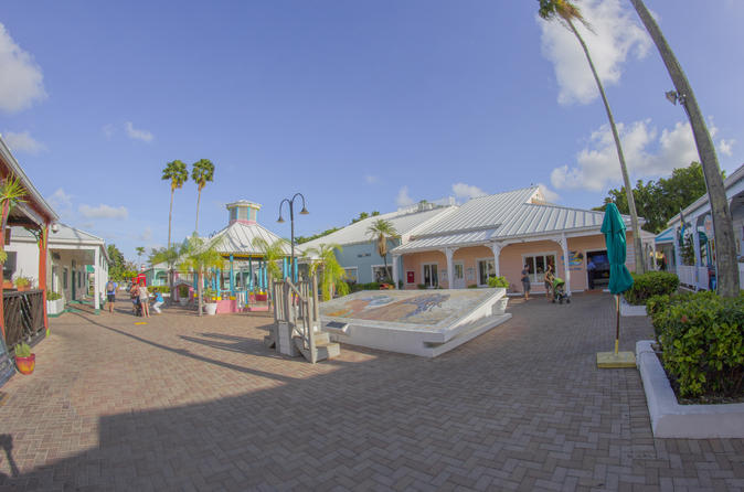 Best of the Grand Bahamas Tour