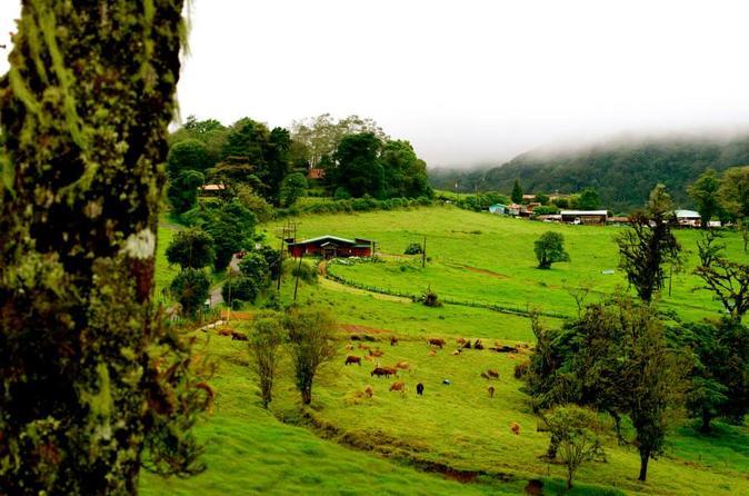 Central Valley Kaffee-Tour, Poas Vulkan und La Paz Wasserfall ...