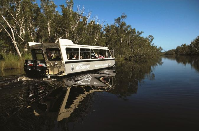 Noosa River and Everglades Afternoon Tea Cruise