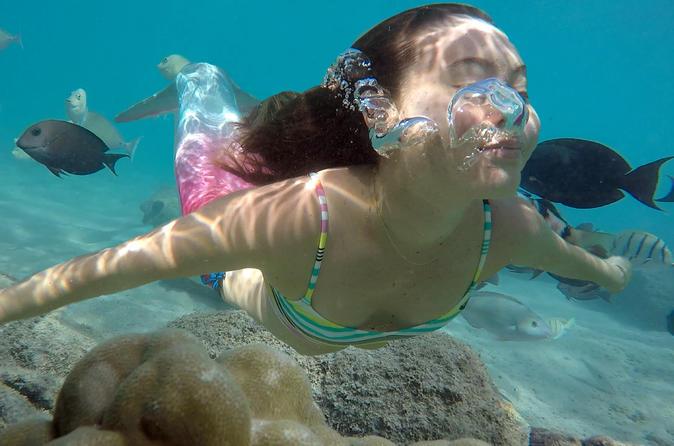Mermaid Tour- Waikiki