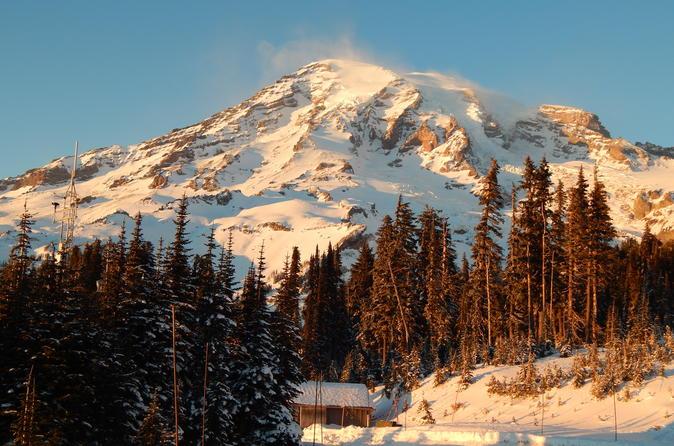 Viagem diurna a Mt Rainier, saindo de Seattle