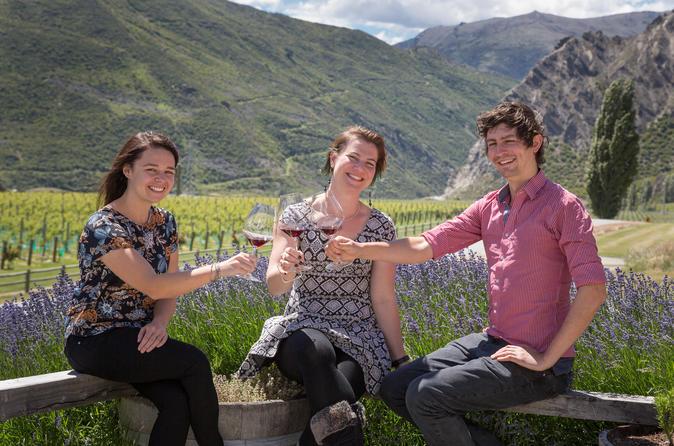 Excursão com degustação de vinhos da região central de Otago, partindo de Queenstown