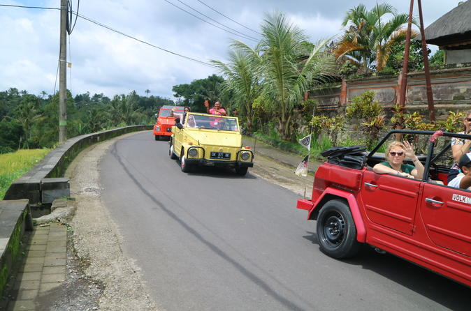 Full-day Kintamani Volcano Tour With VW Safari