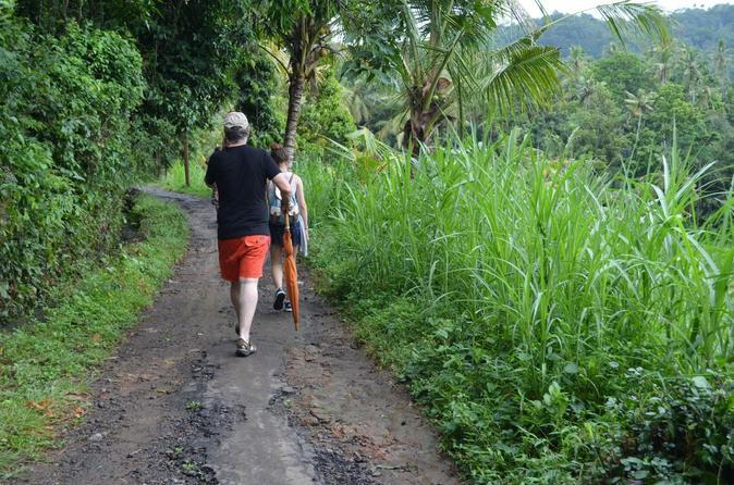 Full-Day Ubud Trekking Tour Including Massage Experience