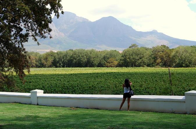 Excursão vinícola de um dia pela África do Sul