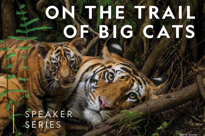 National Geographic Live! Steve Winter - On the Trail of Big Cats