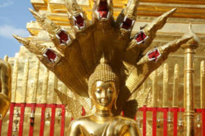 Excursão privada: Cidade de Chiang Mai e templos