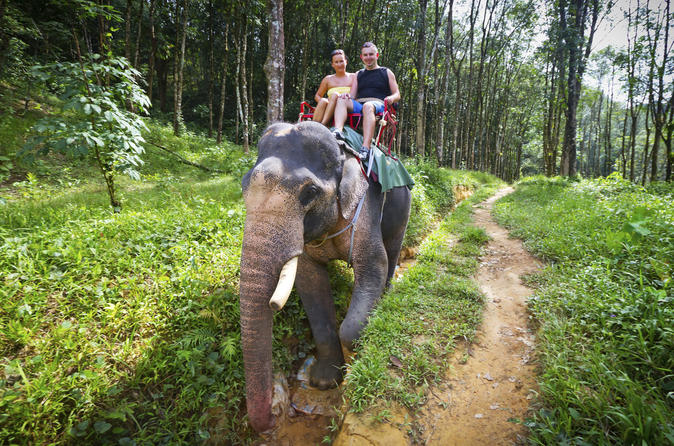 Private tour elephant adventure hilltribes and mae kok river trip in chiang rai 140590