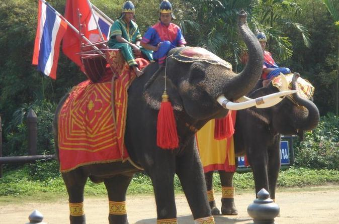 Sampran elephant ground and zoo tour from bangkok in bangkok 40542