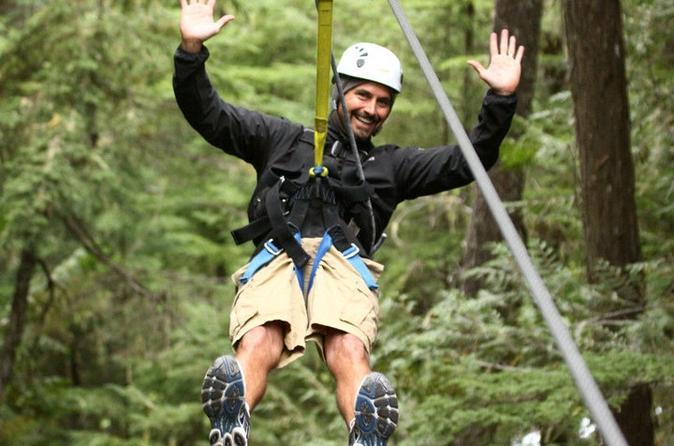Zipline adventure in whistler in whistler 136284