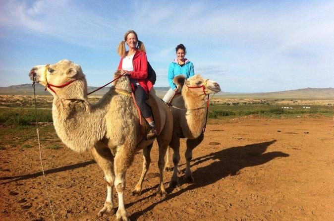 1 day semi gobi tour including lunch and free camel or horseback ride in ulaanbaatar 379159