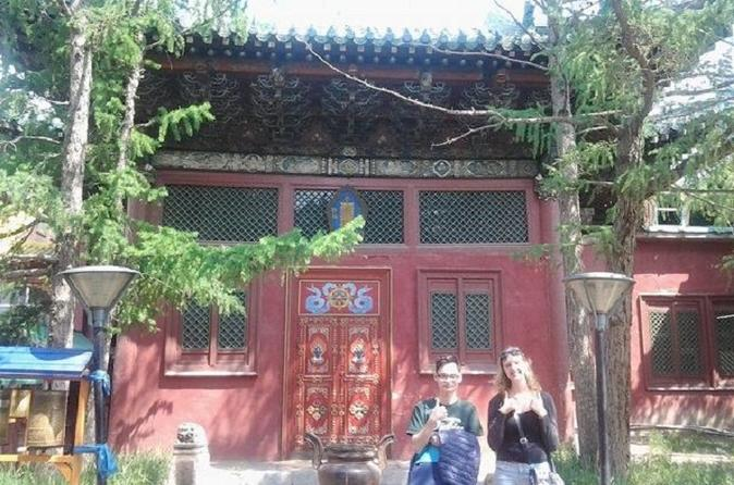 Full day tour of ulaanbaatar with museum and black market in ulaanbaatar 358649