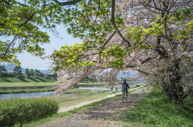 Kyoto Exclusive Electric Bike Tour