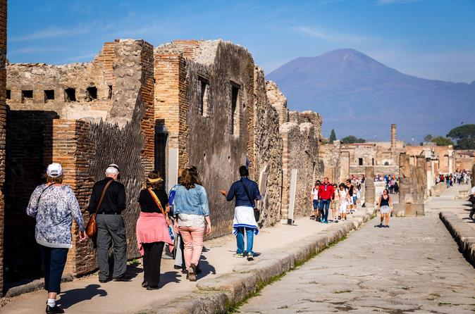 Pompeii Escorted Bus from Rome & Skip the Line Ticket