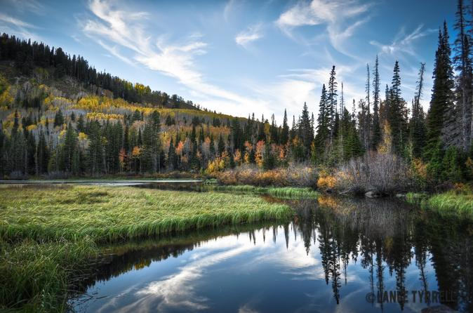 Half-Day Wasatch Mountain Tour From Salt Lake City