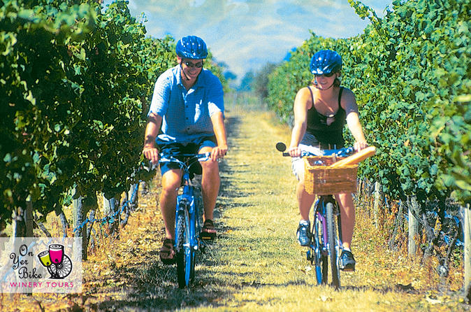 Hawkes Bay Winery Tours Bike