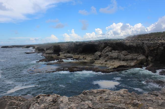 Barbados Shore Excursion: Coastal Sightseeing Tour