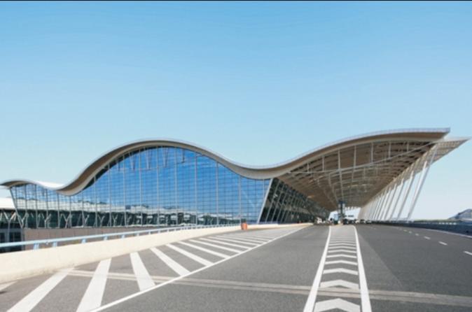 Airport Elite VIP Express Service- International Flight
