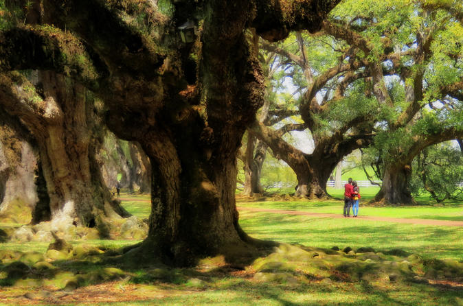 Double Plantation Tour in New Orlean