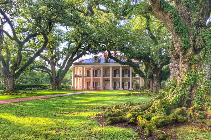 Plantation Brunch and Swamp Experience from New Orleans