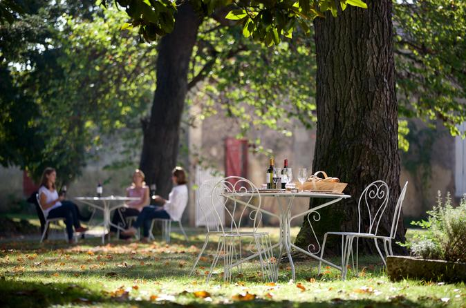 Full-Day Small-Group Guided Wine Tour from Bordeaux with Lunch