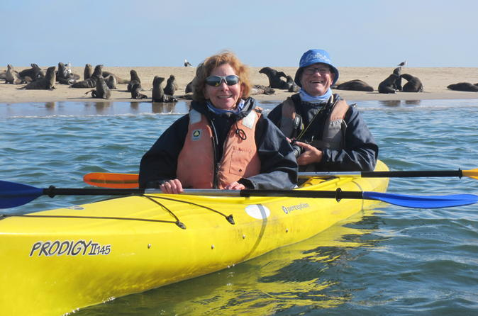 Kayaking And Sandwich Habour Guided Day Tour From Walvis Bay