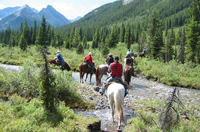 Horseback riding tour in banff with bbq lunch in banff 126451