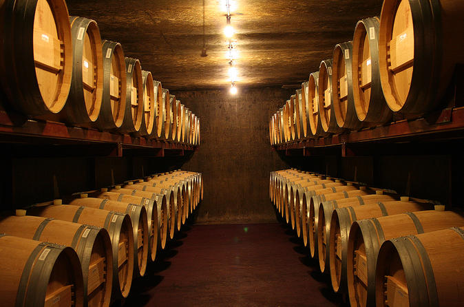 Half day napier wine experience tour in napier 372696