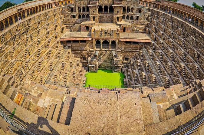 Monkey Temple and Abhaneri Step Well Day Tour