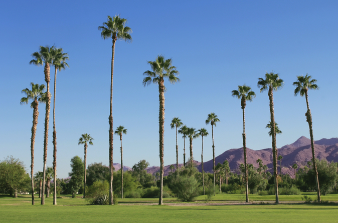 Palm Springs und Outlet-Shopping - Tagesausflug von Los Angeles