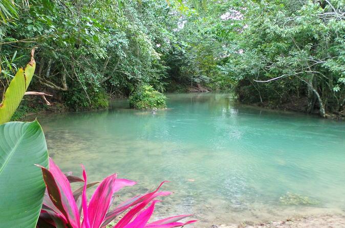 Ocho Rios Reggae Hill and Aqua Tubing Adventure from Ocho Rios Jamaica, Caribbean