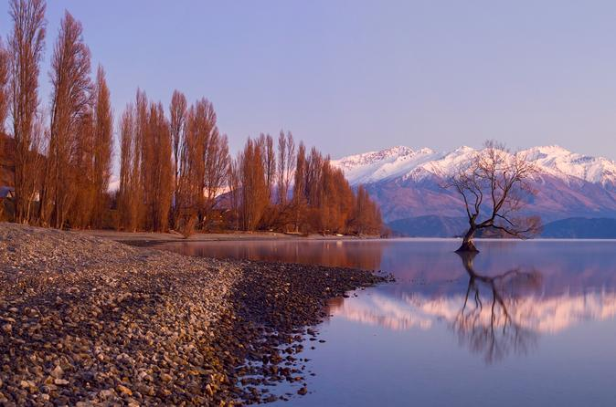 Full-Day Arrowtown and Wanaka Tour from Queenstown