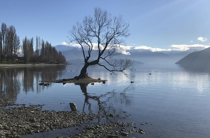 Half-Day Historical Arrowtown and Wanaka Tour from Queenstown