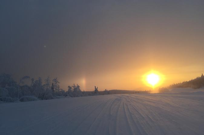 Full Day Small Group Tour of Arctic Circle from Fairbanks