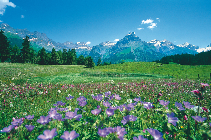 Viagem de um dia para Lucerna e Engelberg saindo de Zurique