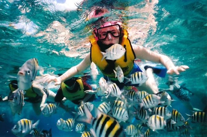 Private Tour: Tioman Island Reef Snorkel and Fireflies Day Trip from Singapore""