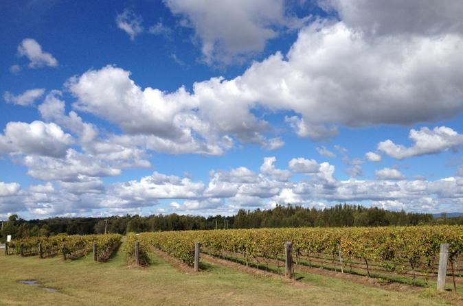 Hunter Valley Wineries and Wilderness Small-Group Tour
