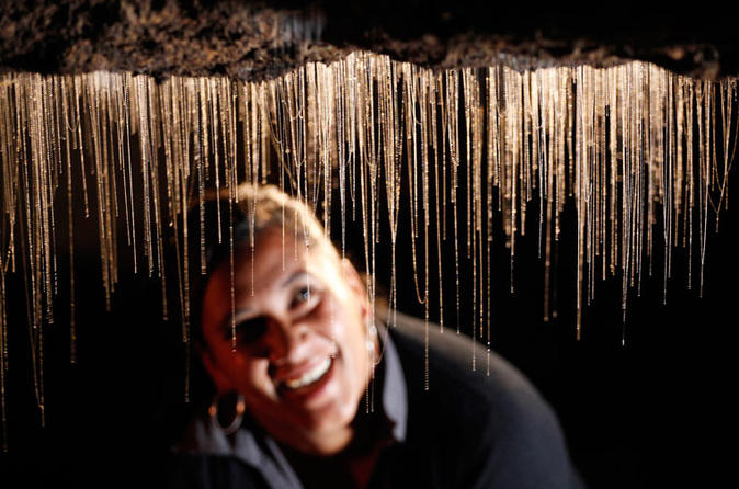 Rotorua to Auckland via Waitomo Glowworm Caves One-Way Tour