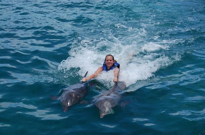 Punta Cana Dolphin Swim Adventure with Optional Upgrade to Royal Dolphin Swim
