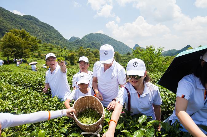 2 Day Tea Mountain Travelling - Shenzhen