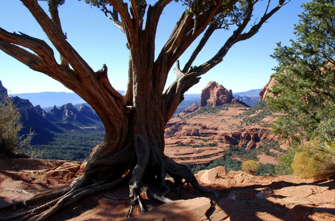 Old bear wallow tour from sedona in sedona 126081