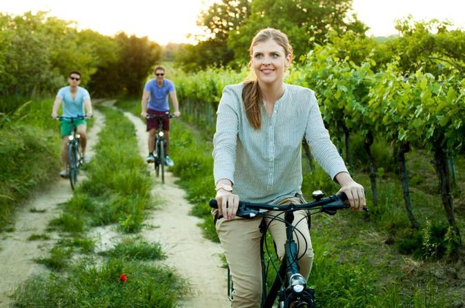 Vienna Water And Wine : A Pleasure Tour by Bike and Foot