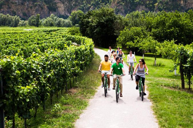 Small Group Wachau Valley Winery Bike Tour