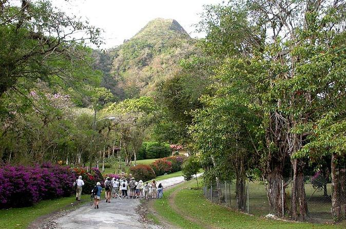 Anton Valley Highlights Tour From Panama City