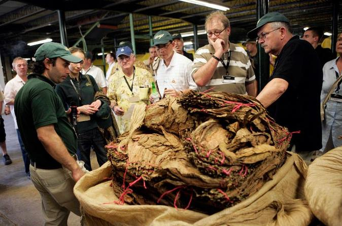 Cigar and Esteli City Tour From Managua