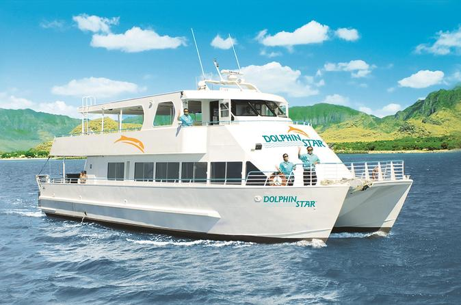 Oahu Wild Dolphin Watching Cruise and Snorkel with Lunch